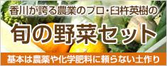 臼杵農園野菜セット