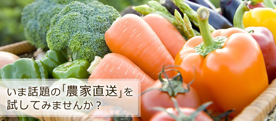 有機野菜のネット販売店マイファーマー